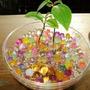 2 Bolsa Perla Agua Flores Planta Ornamentales Cristal Suelo