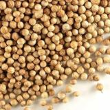 Semillas De Cilantro 5 Gramos