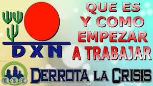 Dxn Distribuidor Independiente