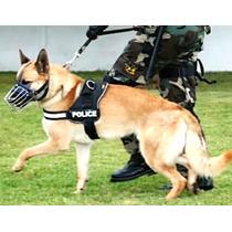 Arnes Personalizado Perros Estilo K9 Con Nombre