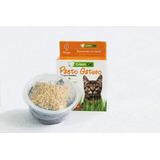 Pasto Gatos / Kit Semillas Germinar Plantas - Digestiva