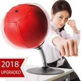 Computadora De Computadora Saco De Boxeo/bola Estrés Bust