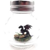 Terrario De Escritorio Negro Del Dragón Del Animal Doméstico