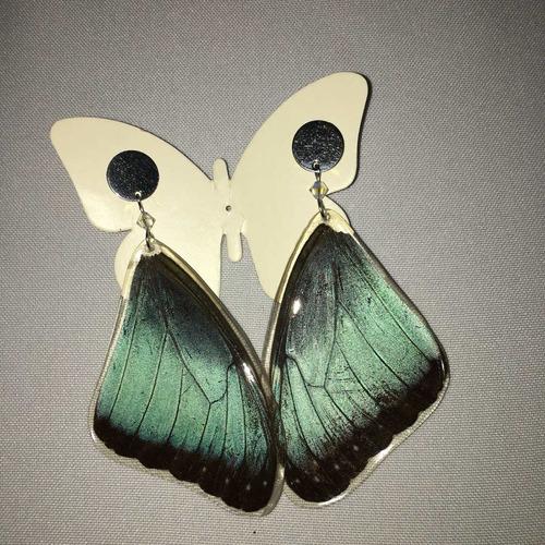 f479be59897f Aretes Alas De Mariposa Natural Morpho Emperador