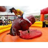 Toro Mecanico Alquiler 3103318436