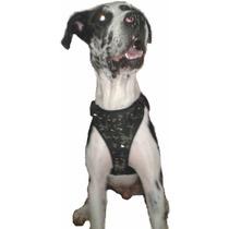 Pecheras Taches Para Perro En Lona Camufladas O Solo Fondo