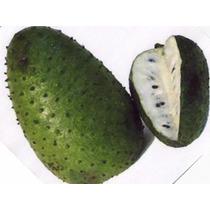 Pulpa De Fruta 100 % Natural
