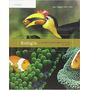 Biologia: La Unidad Y La Diversidad De La Vida - 12e + Envío