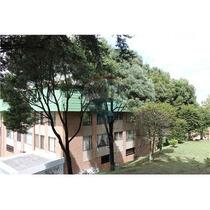 Apartamento En Venta, El Pinar, Suba