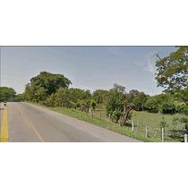 Vendo O Permuto Lotes En El Guamo (tol) Sobre La Vía A Neiva