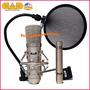 Microfono De Estudios De Grabacion Cad Gxl2200sp De Condens.