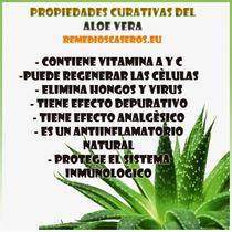 Aloe Vera. Sabila . Apto Diabeticos + Envio Gratis!!!