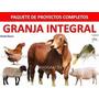 Proyectos Cria De Gallinas , Cerdos,cachama Y Vacas Lecheras | OSKAR32